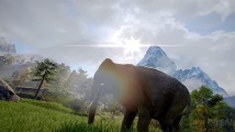 far-cry-4-elefant-2